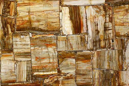 Ретро Петрифайд Вуд (Retro Petrified Wood)
