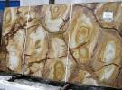 Паломино / Стоун Вуд (Palomino / Stone Wood)