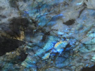Лемуриан Блю (Lemurian Blue)